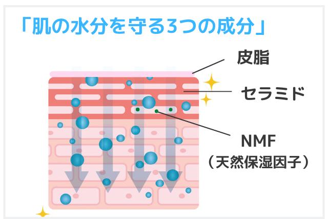 肌を守る主な3つの保湿成分