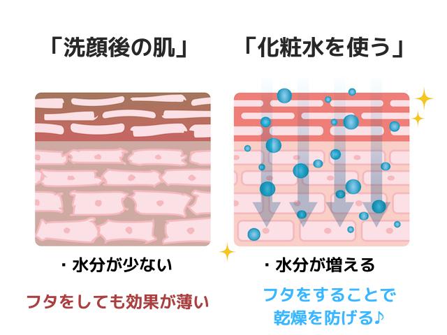 洗顔後の肌と化粧水・乳液の関係図