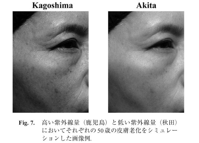 光老化による肌のシミュレーション結果