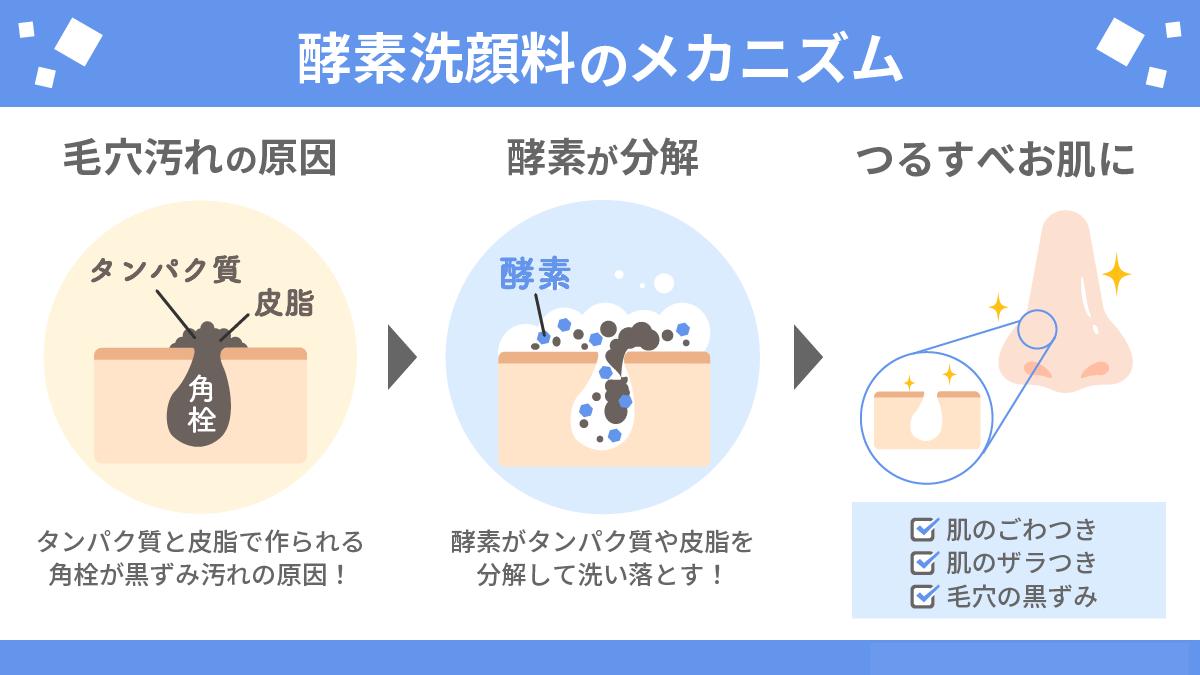 酵素洗顔料のメカニズム