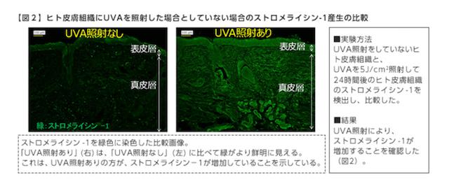 富士フィルムによる紫外線と乾燥の関係についての研究データ
