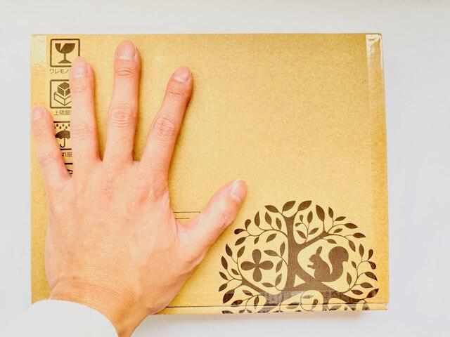 ヒアロディープパッチの入ったダンボールと手のひらの大きさを比べた画像
