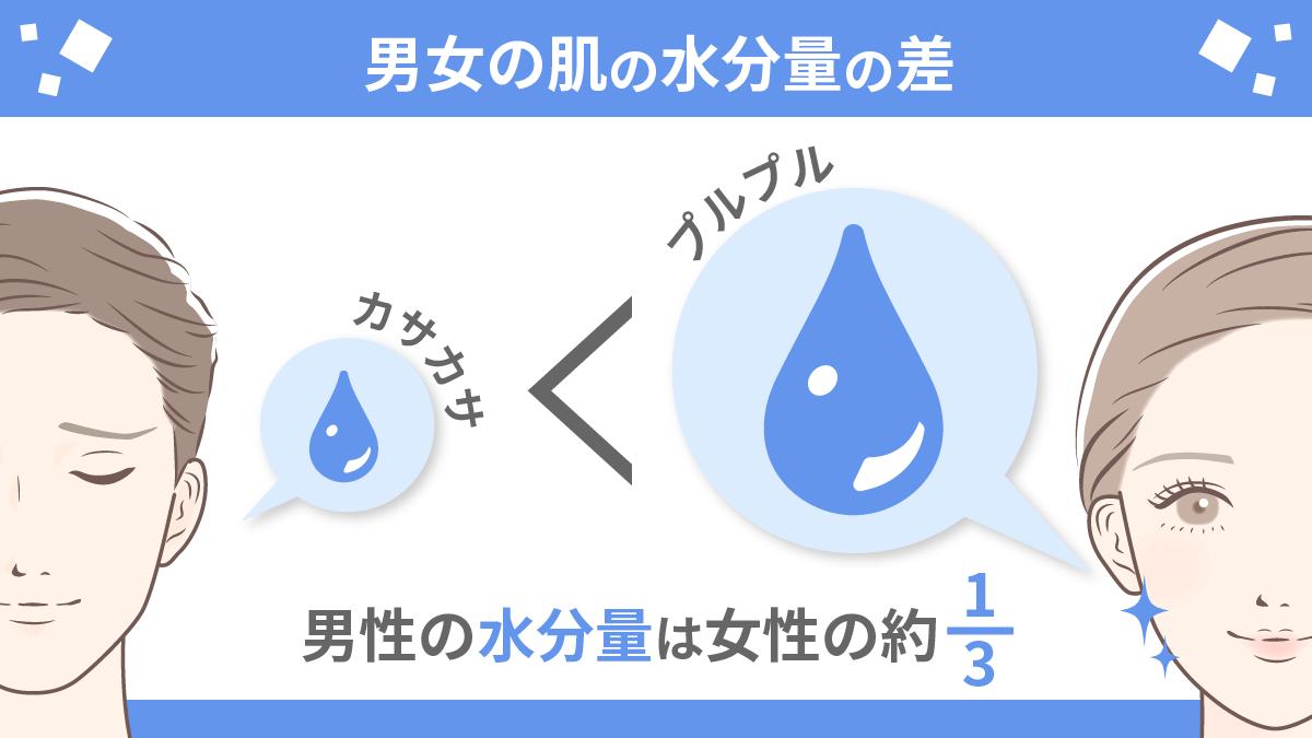 男女の肌の水分量の差