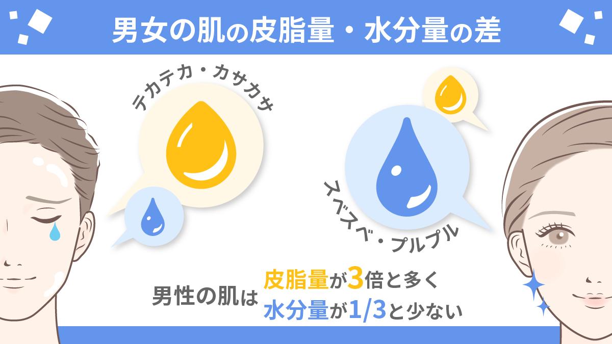 男女の肌の皮脂量と水分量の差